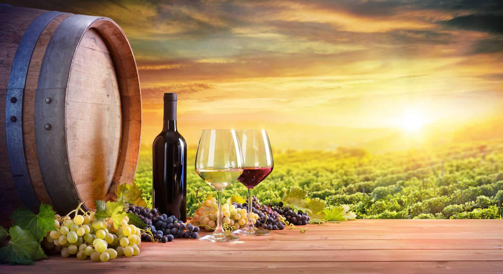Italy wine festival